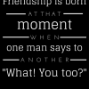 Friendship is born - so true!